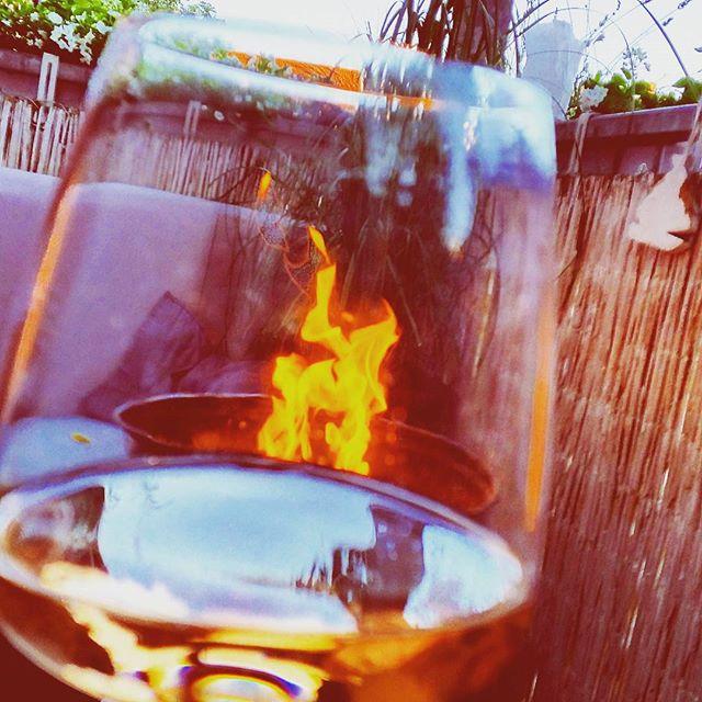 4 onmisbare wijnen voor bij de BBQ