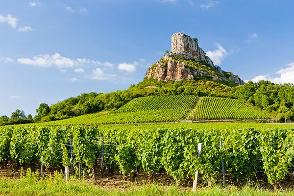 Klassiek genieten in de Bourgogne